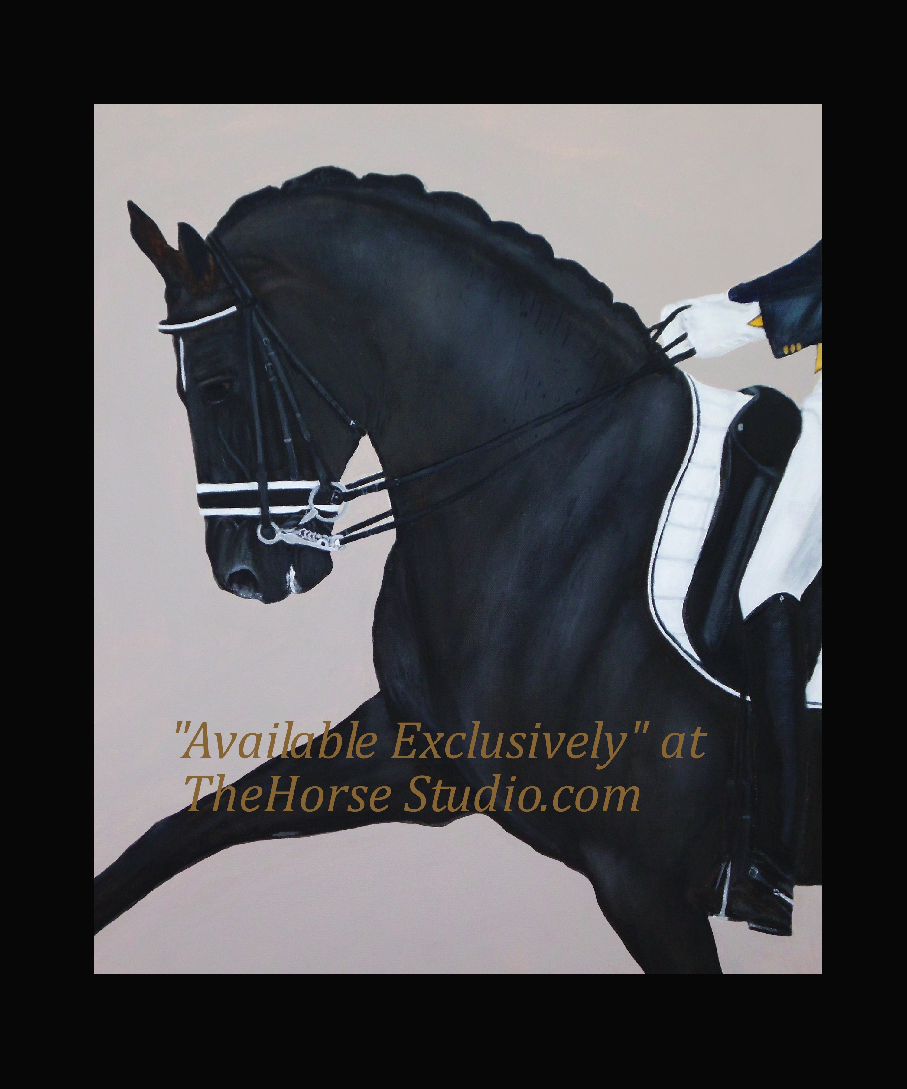 Dreaming Totilas Colleen Walker Exclusively Thehorsestudio